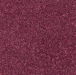 Cavalier carpets from J.Walker Carpets Linlithgow